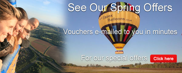 Looking for Spring Flights?