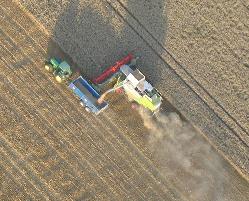 You can often see the dust kicked up by combine harvesters during summer months or sometimes be lucky enough to fly right over one working the fields in Essex to harvest wheat for bread making, barley for animal feed or seeds to grow more crops