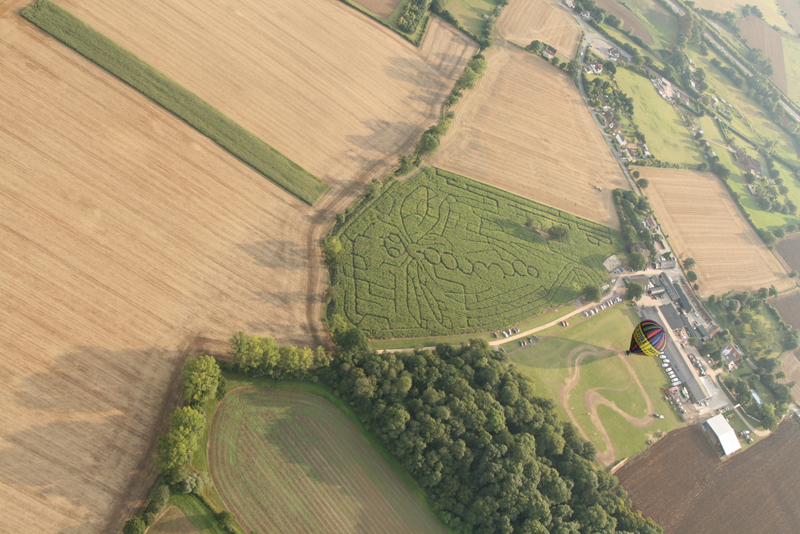 Every year when we take off on our Essex hot air balloon rides in the late summer from Blake House Craft Centre near Braintree we are treated to the spectacle of the maze, a popular visitor attraction. Every year the design cut into the maze is different. This is the 2013 maze. Click here to see some previous maze patterns over the years.